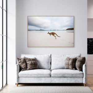 Kangaroo on Beach Wall Art Print