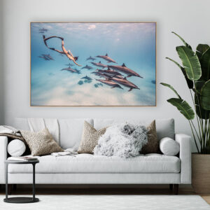 Skin Diver Woman with Dolphins Wall Art Print