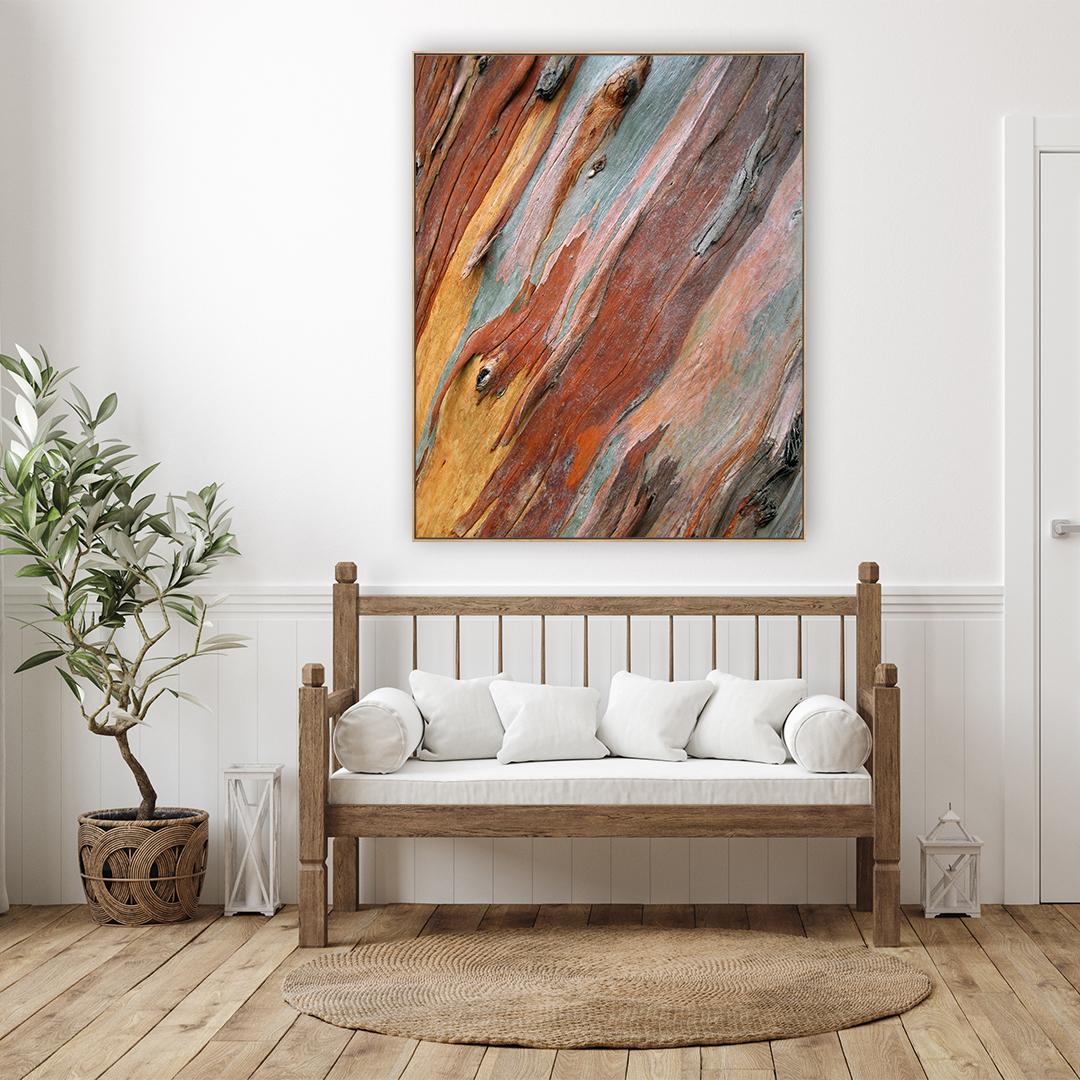 canvas prints of eucalyptus tree